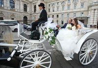 организация свадьбы в Вене
