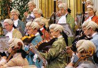 концертная Вена